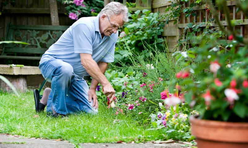 Why Seniors Should Stay Active